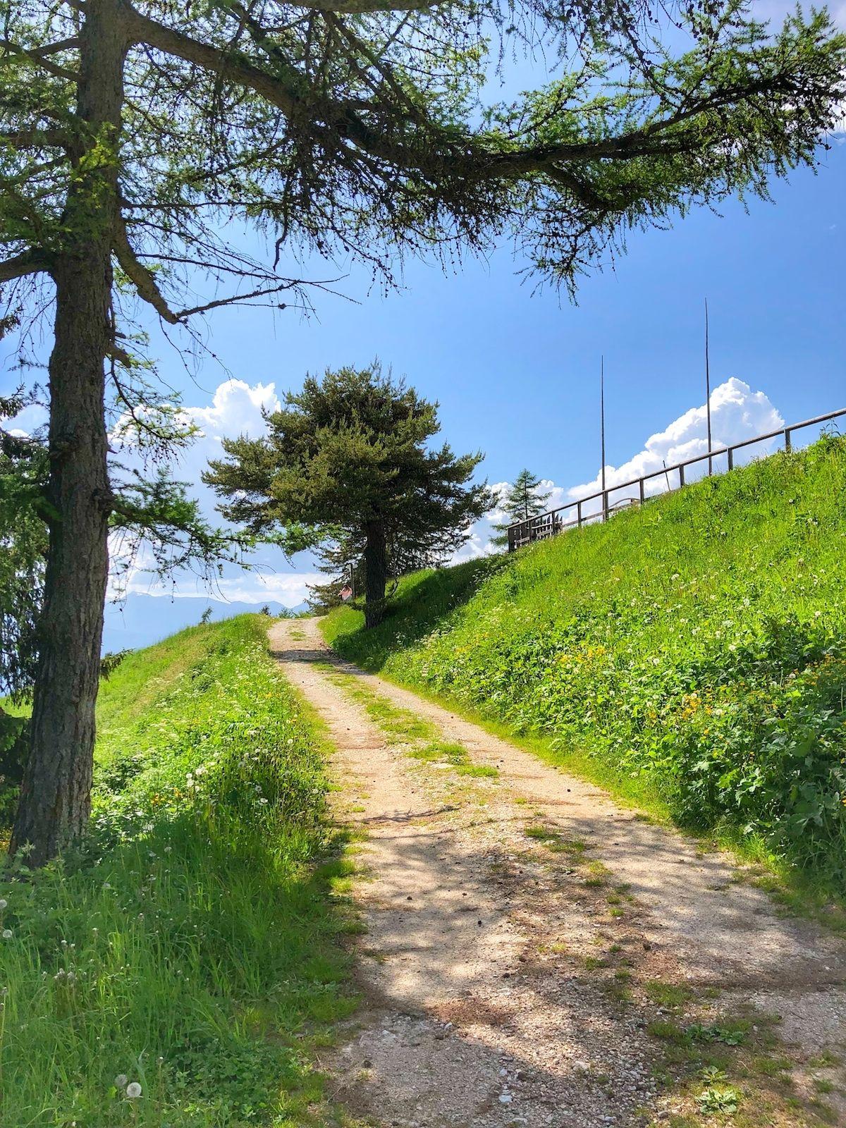 malga-rodeza-sentiero estate